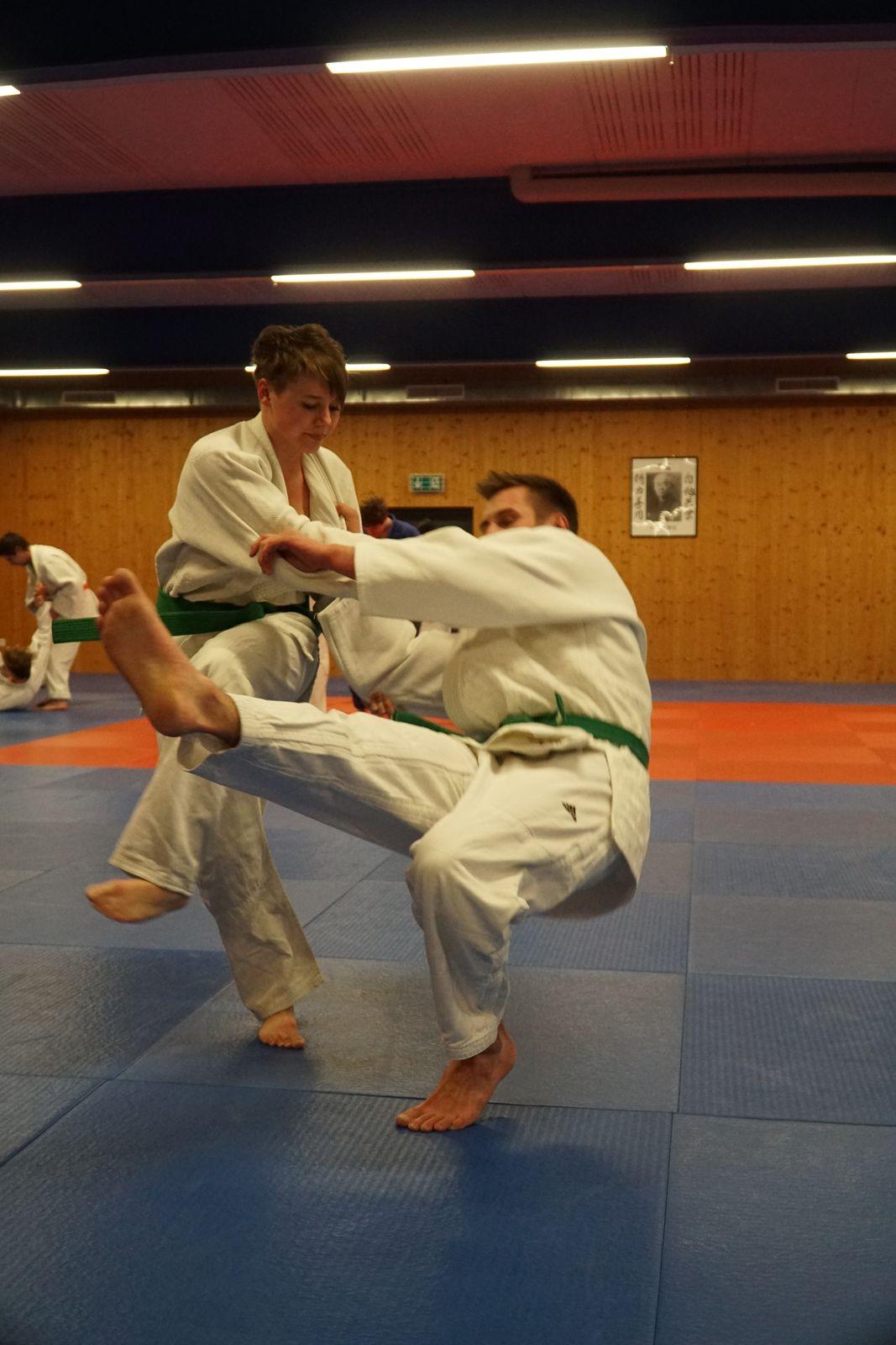 Abschlusstraining_Judo_2018_026