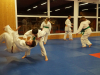 Abschlusstraining_Judo_2018_010