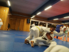 Abschlusstraining_Judo_2018_034