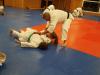 Abschlusstraining_Judo_2018_043