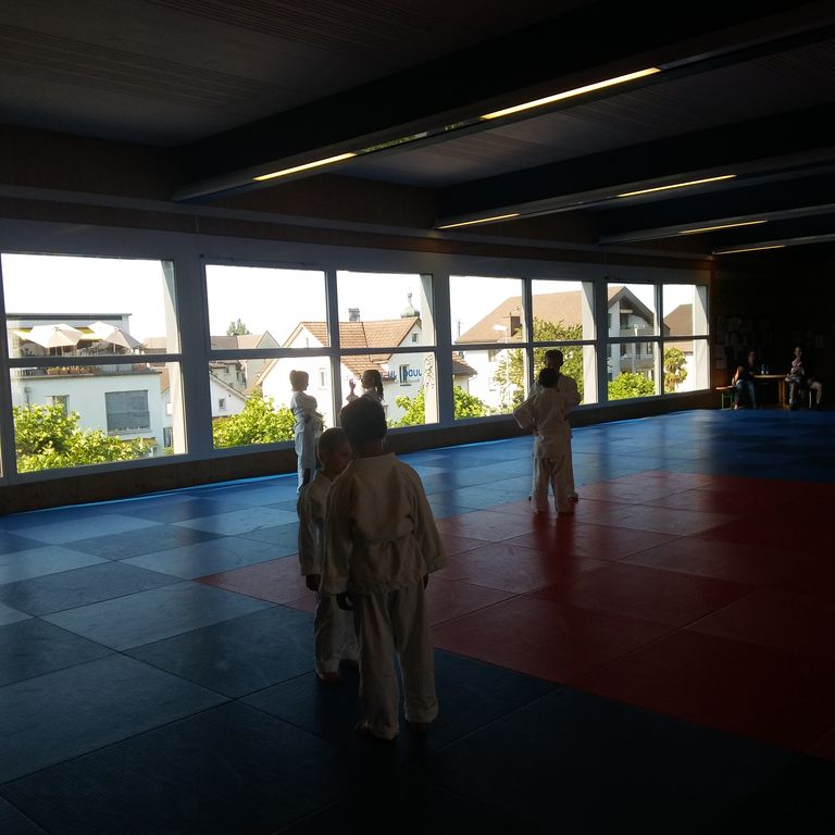 Gürtelprüfung_Judo_Kids_09.06.2017_03