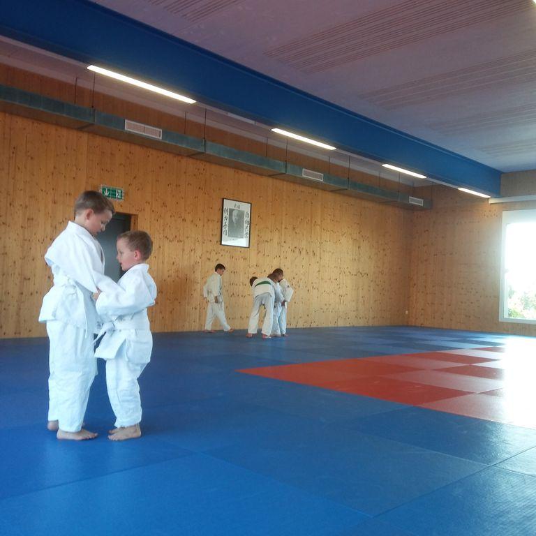 Gürtelprüfung_Judo_Kids_09.06.2017_15