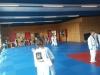 Gürtelprüfung_Judo_Kids_09.06.2017_04