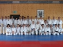 Ju-Jitsu Kurs Andreas Santschi 19.02.2011